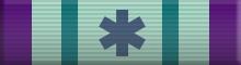 Leonard McCoy Medical Award